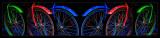 IMG_0307-C-LevelsCrop-Canvas copy.jpg