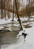 McConnells-Mill-stream-2364.jpg