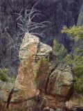 National Parks -- Not Arkansas