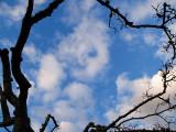 2007-09-14 Clouds