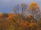 WV ~ Fall Colors - 2006