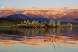 Mono Sierra Sunrise - 3