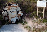 2007 - Protective door to the entrance/exit tube at the Kennedy bomb shelter on Peanut Island stock photo #0898