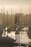 Hull marina December morning 2