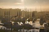 Hull marina December morning