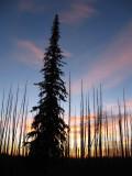 Sunset at Saddle Creek campground, Hells Canyon.