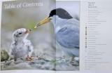 Houston Atlas of Biodiversity  - Houston Wilderness, 2007 - Book