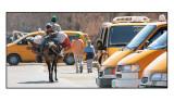 Nashash Bus Stop - Israeli roadblock prevents direct access to Behtlehem