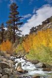 Eastern Sierras.jpg