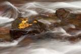 Lee Vining canyon.jpg