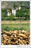 Towers and Folk Houses ¤d¸M¸U¹ë ¡V ¤¤¸ô¡B±ô©Y