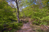 Bronx River Walkway - New York Botanical Garden