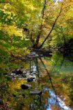 Bronx River - New York Botanical Garden