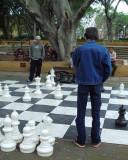 Contemplation - Hyde Park