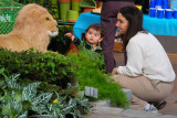 Hicks Nursery Spring Flower Show 2007