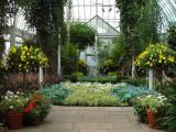 Inside Enida A. Haupt Conservatory
