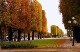 Paris (4777)