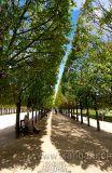 Paris (5489)
