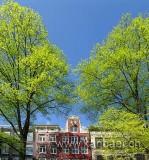 Amsterdam (00417)