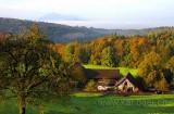 Herbst in Neuheim (1149)