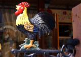 Hahn / Cock (4995)