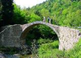 Rosia - Ponte della Pia (062)