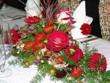 Blumen / Flowers (09917)