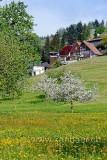 Fruehling (74072)