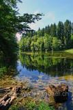 Waldweiher (75819)