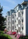 Steinhausen (75955)
