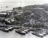 1941 - U. S. Navy PT boats at Bayfront Park, downtown Miami
