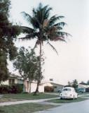 Late 1960's - 5691, 5661, 5631 and 5601 W. 9th Lane, Hialeah