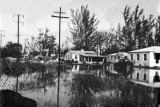 1947 - residential area of Miami Springs after the Flood of 1947 caused by Hurricane VI