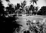 1960 - the pool and garden area at the Silver Sands motel at 301 Ocean Drive, Key Biscayne