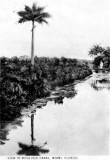 1910s - Postcard of the Musa Isle Canal off of the Miami River