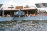 1970's - the Miami Seaquarium