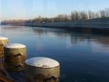Frosty morning cruise