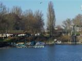 Moorings near Strasbourg