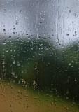 Rainy Day Monet