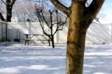 Winter 07
