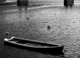 Round buoys, sinking boat