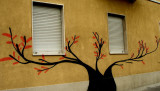 tree and windows