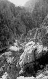 Découverte des Calanques en 1956 : En Vau