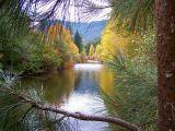 autumn *all galleries*