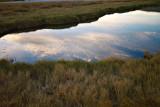 Salt Creek Pond