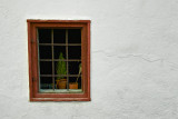 Stein Window