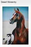 Arab horse designs