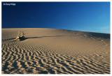 0521- sand dunes at Mungo