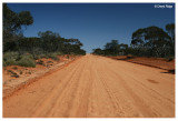 0545- Mungo area - mallee - red dirt road