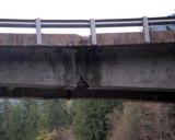 bridge-2a.jpg